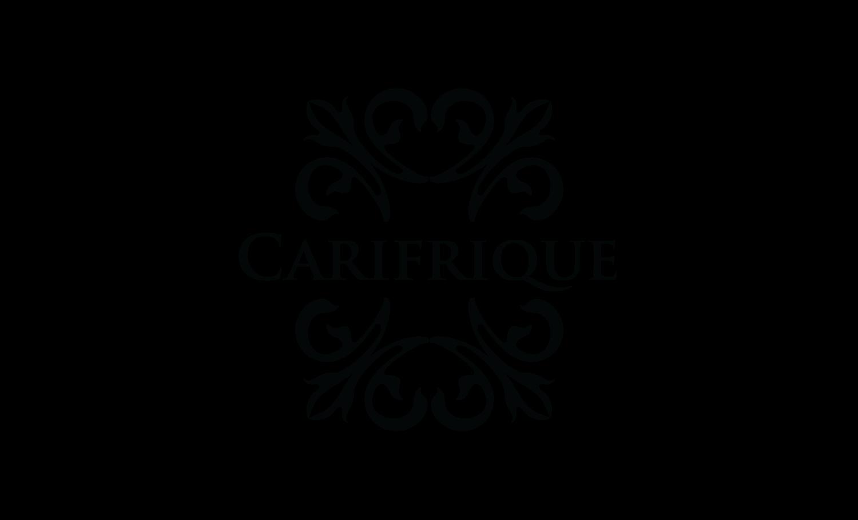 Carifrique Trinidad Carnival Tours | トリニダード・トバゴカーニバルのツアー